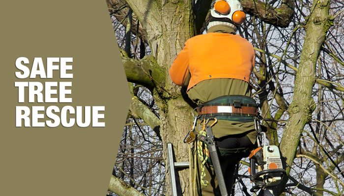 Safe REscue for Arborists