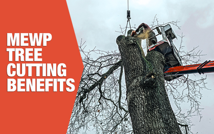 mewp tree cutting benefits