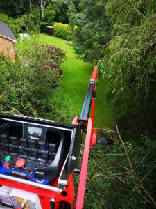 Forestry Tree Surgery Platform Industry Image